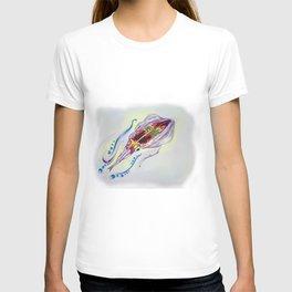 Caribbean Reef Squid T-shirt
