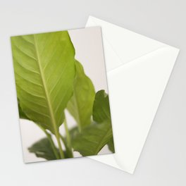 Hojas verdes (2) (green leafs) Stationery Cards