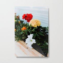 Spring Flower Box Metal Print