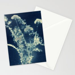 Botanicus (15), Botanical Art Print, Art Print, Botanical Poster, Vintage Print, Home Decor Stationery Cards