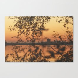 Faded Days Canvas Print
