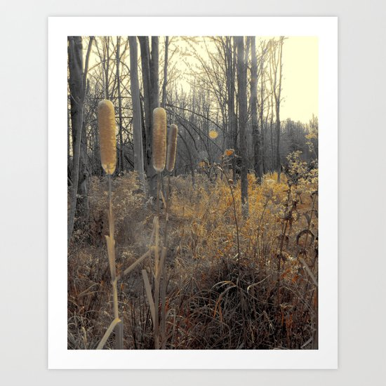 Tails Of Fall Art Print