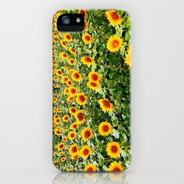 Field of Sunny Flowers iPhone Case