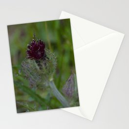 Floral Print 070 Stationery Cards