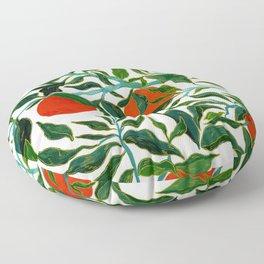 Spring series no.3 Floor Pillow