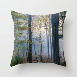 Mystic Forest - Early Morning Glow in Smoky Mountains Throw Pillow