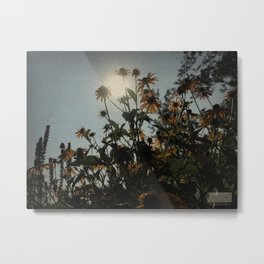 Near Flowers... Metal Print