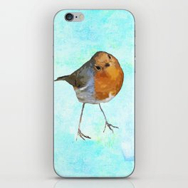 Robin -The visitor iPhone Skin