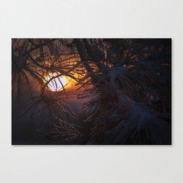 winters warm embrace Canvas Print