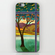 Shadow of a Seville Orange iPhone & iPod Skin