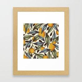 Lemons, Oranges & Pears Framed Art Print