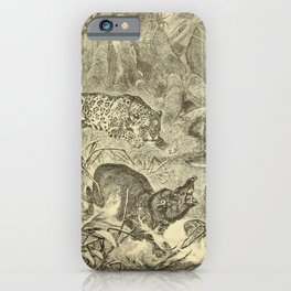 Vintage Print - Animals in Action (1901) - Tapir and Young pursued by Jaguar iPhone Case