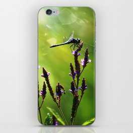 Sunny Day Dragonfly iPhone Skin