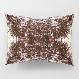 Vetruvian Pillow Sham