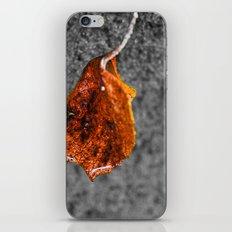 Floating Leaf iPhone & iPod Skin