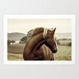 brown horse on the hill Art Print