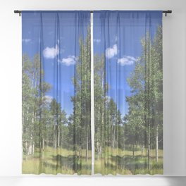 Watercolor Landscape, Lost Creek Wilderness 09, Colorado Sheer Curtain