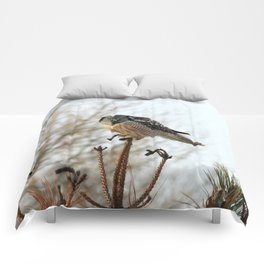 Focused Comforters