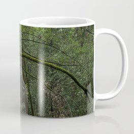 Jack London State Park Coffee Mug