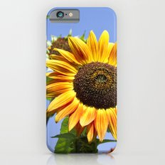 Colorful Sunflowers And Blue Sky iPhone 6s Slim Case