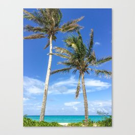 Towering Palm Trees, Blue Sky Canvas Print