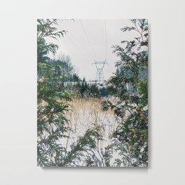 Across the park Metal Print