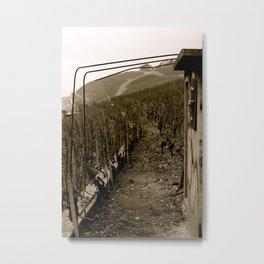 Sur La Montagne Metal Print