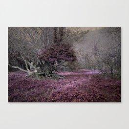 Purple Glade Canvas Print