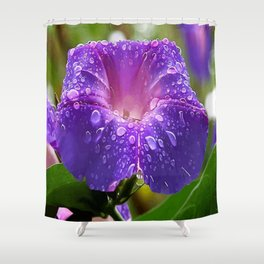 Morning Glory Petals and Dew Drops Vector Shower Curtain