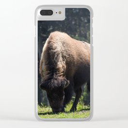 Majesty of the West (Bison) Clear iPhone Case