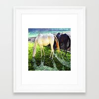 horses Framed Art Prints featuring horses by  Agostino Lo Coco
