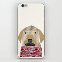 labrador iPhone & iPod Skins featuring the labrador by bri.buckley