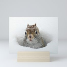 Pop-up Squirrel in the Snow Mini Art Print