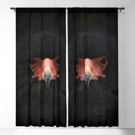Black Hawk Blackout Curtain