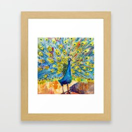 Peacock Pootinella Framed Art Print