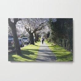 Cherry Blossom Sidewalk Metal Print