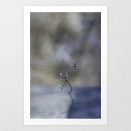 Dainty Nature Art Print