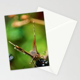 Butterfly in the Hedgerow Stationery Cards