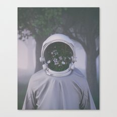 Face Reveal Canvas Print