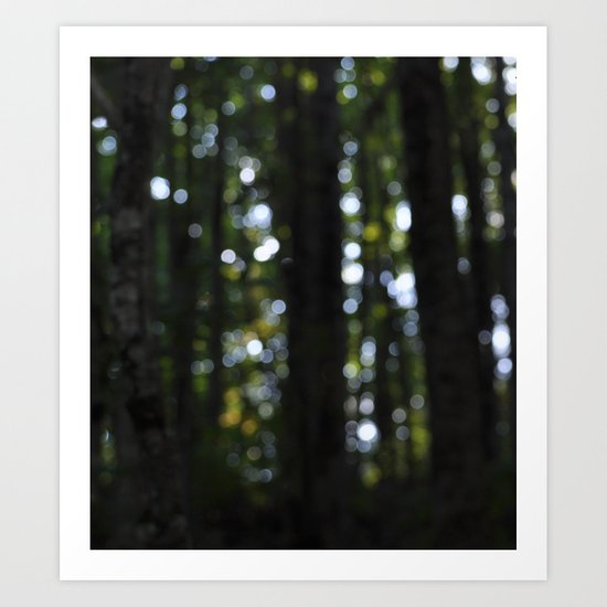 In the Dark Woods.... Art Print