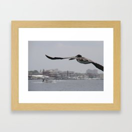 Pelican Landing Strip Framed Art Print