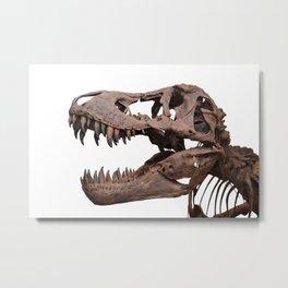 Tyrannosaurus rex Metal Print