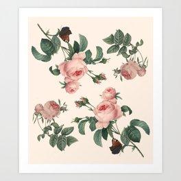 Rose Garden Butterfly Pink Art Print