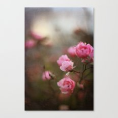 November Roses Canvas Print