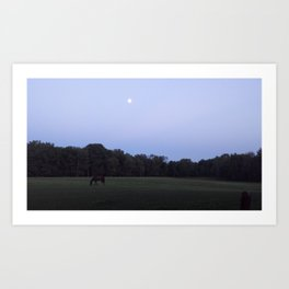 Molly in the Moonlight Art Print