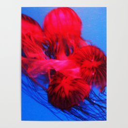 Underwater Ballerinas Poster