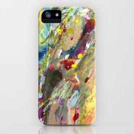 Tide iPhone Case