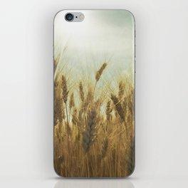 Near Harvest iPhone Skin