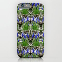 Grape Hyacinths galore iPhone Case