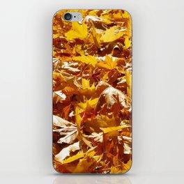 Crunch Underfoot iPhone Skin